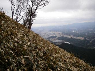 20070114koberayama_057