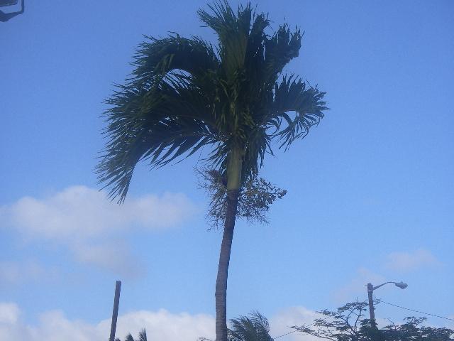 Guam0312pm_011
