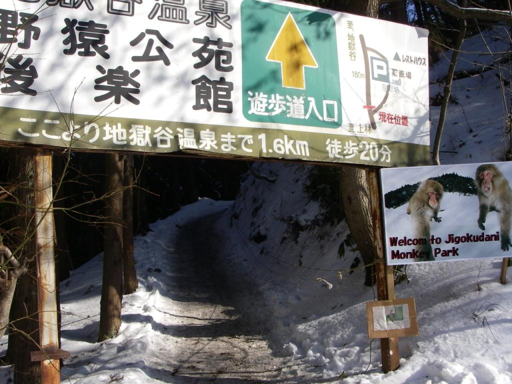 Jigokudani_038