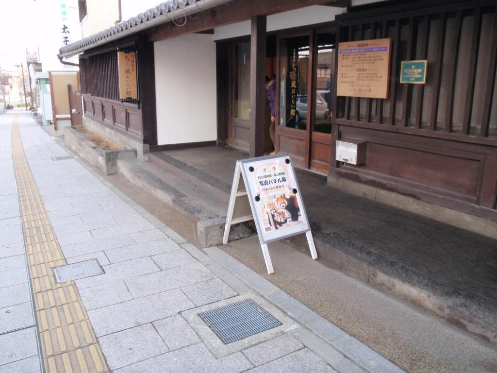 Jigokudani2_227