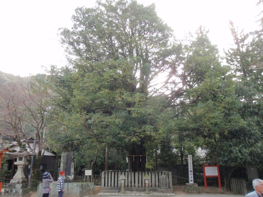 Kumano2_132