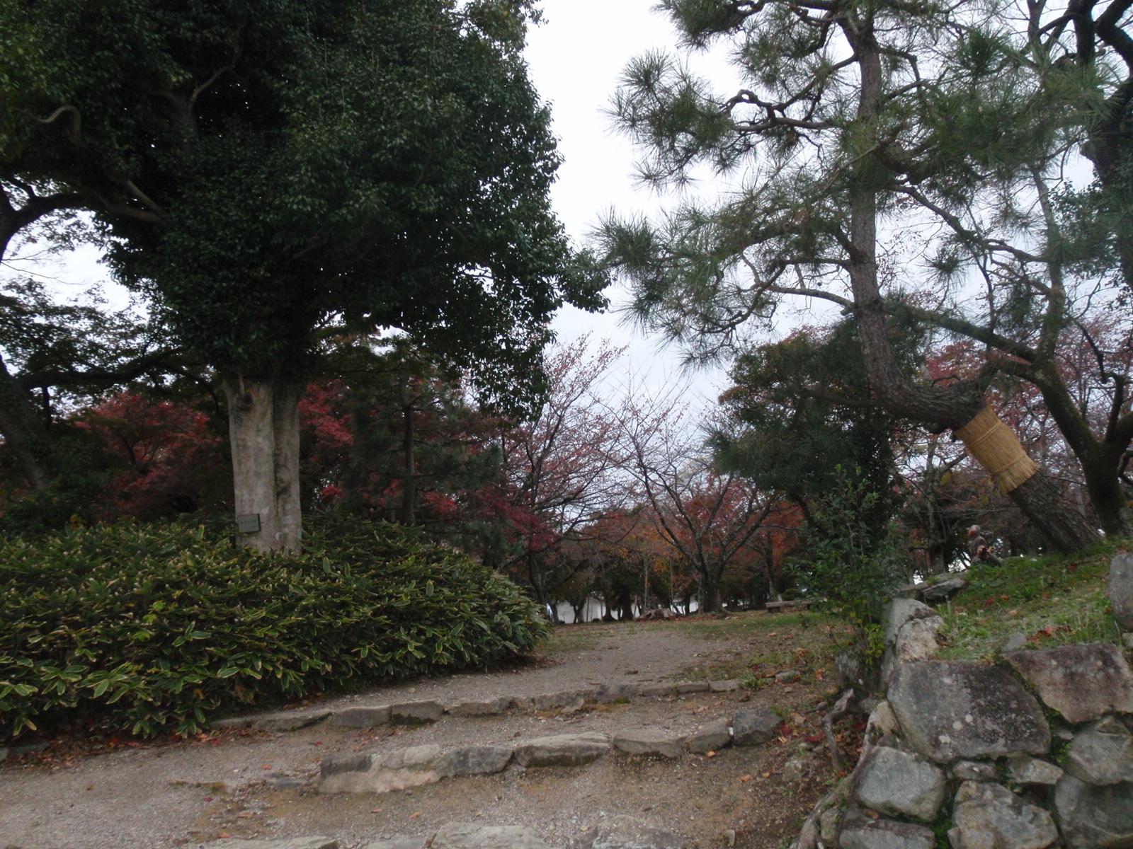 Hikone_046