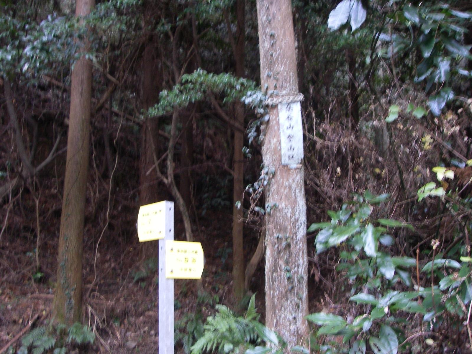 Kuwagaiyama_035