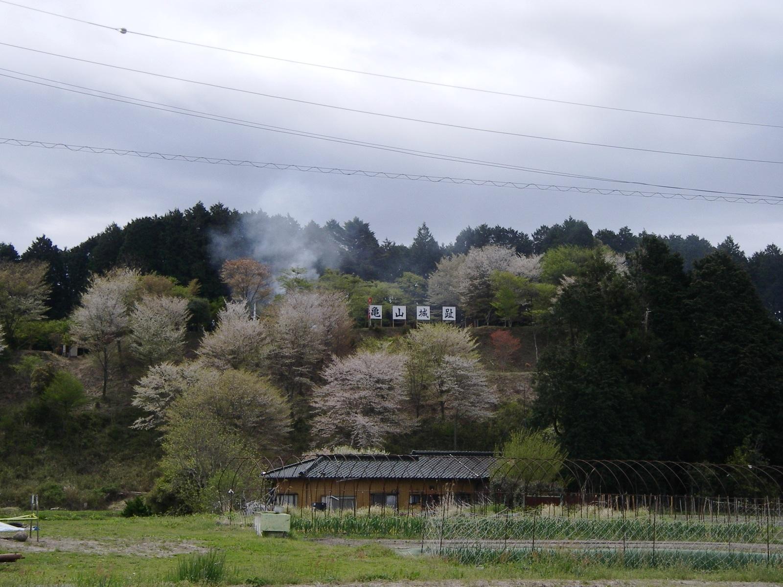 Ryuzusan_004